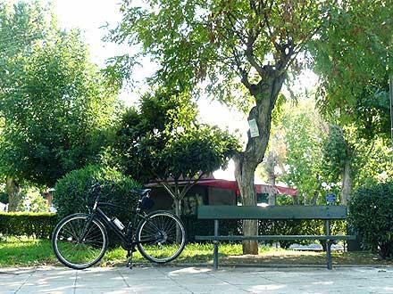 Frappe Ride