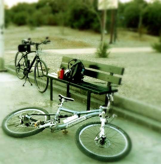 Biker's Sunday